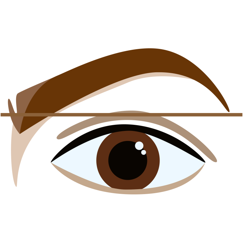 Over-Extended Brow (front)
