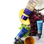 Why Paula's Choice Skincare Loves Antioxidants